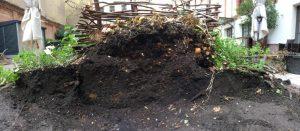 közösségi komposztáló kas zöld hulladék