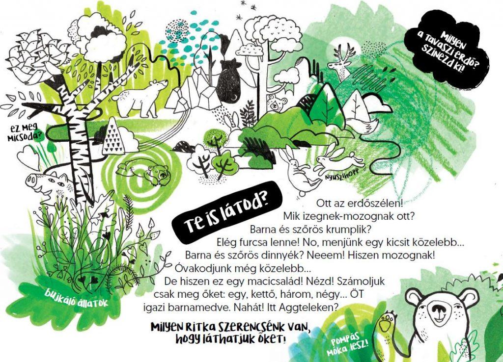 környezeti nevelés kiadvány ismeretterjesztő